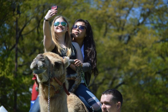 Taking camel selfies on McKeldin Mall at Israel Fest 2015. Dovid Fisher/Mitzpeh