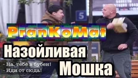 Пранк / Назойливая мошка / PranKoMat
