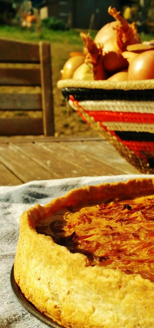 tarte à l'oignon 2