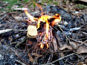 smore_features