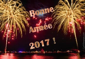 Meilleurs Voeux de Bonne Année