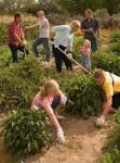 family work in garden