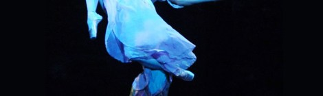キム・ナウン、「もっと長く!もっと綺麗に!」プリンシパルとしての初舞台