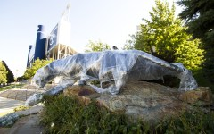 The cougar still stands fierce under layers of shrink-wrap.