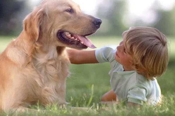 bambini e animali una splendida amicizia