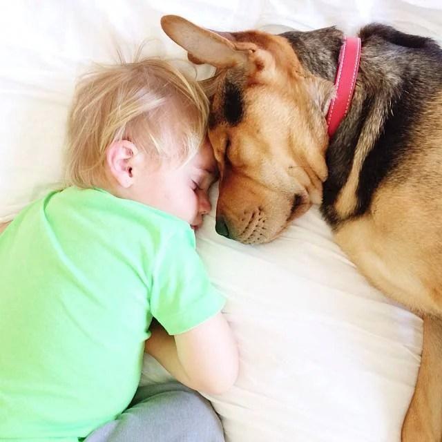 bimbo e cane dormono vicini
