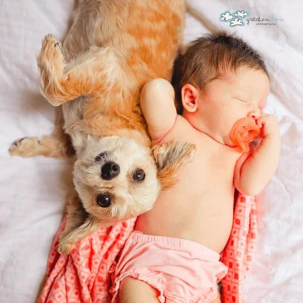bimba con coperta e cane