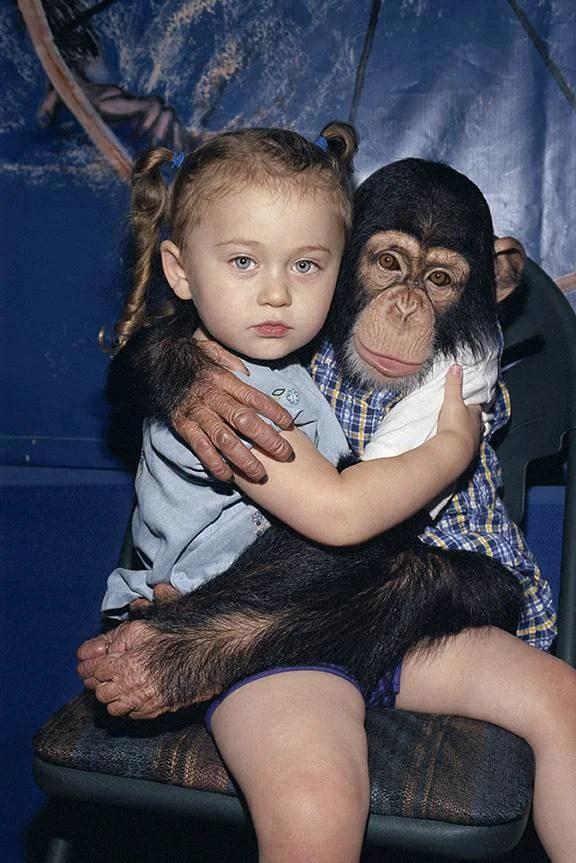 bimba abbraccia scimmia
