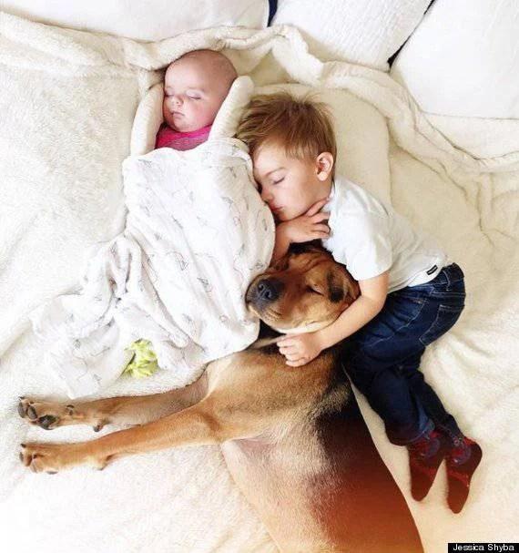 bambini nel letto col cane