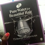 T3 Source Showerhead Filter…A Review