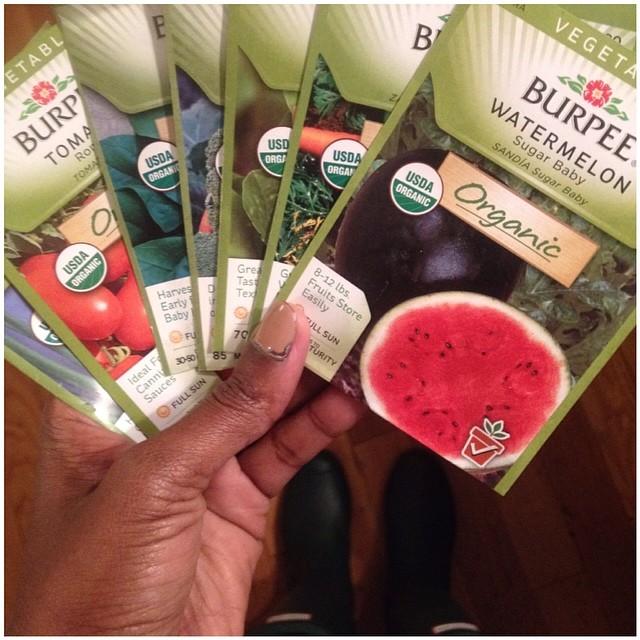Organic Burpee Seeds