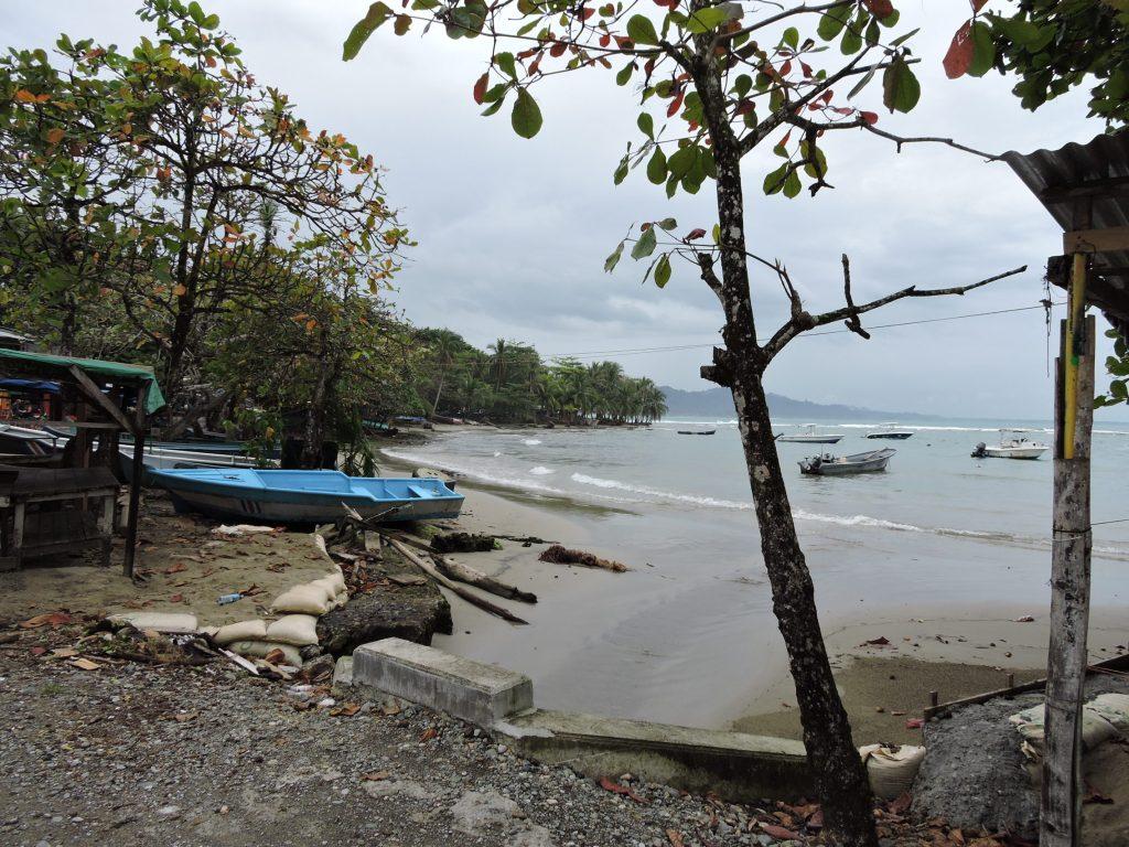 Jaguar rescue center au costa rica