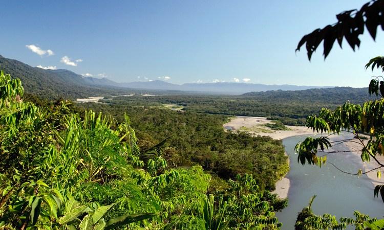 Parc national Manu Pérou