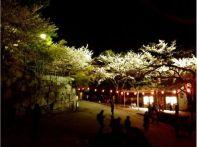 福岡の桜 おすすめ名所はここ!各見頃時期の開花予想2015