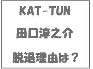 KAT-TUN田口淳之介脱退理由彼女小嶺麗奈結婚