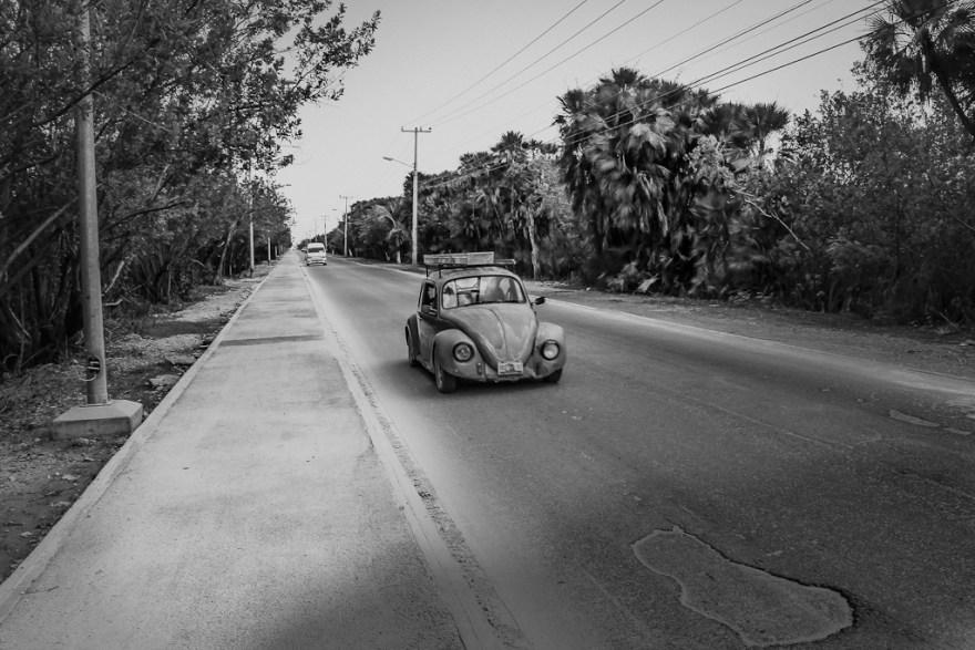 Pichirilo, Weg nach Puerto Morelo, Mexiko 2014 (c) Christoph Pankowski