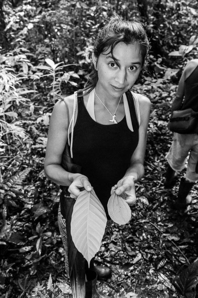 Essbare/Ungenießbare Planzen erkennt man an der Musterung der Blätter , Costa Rica (c) Christoph Pankowski