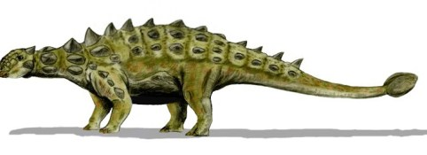 Dinosaur Whisperer