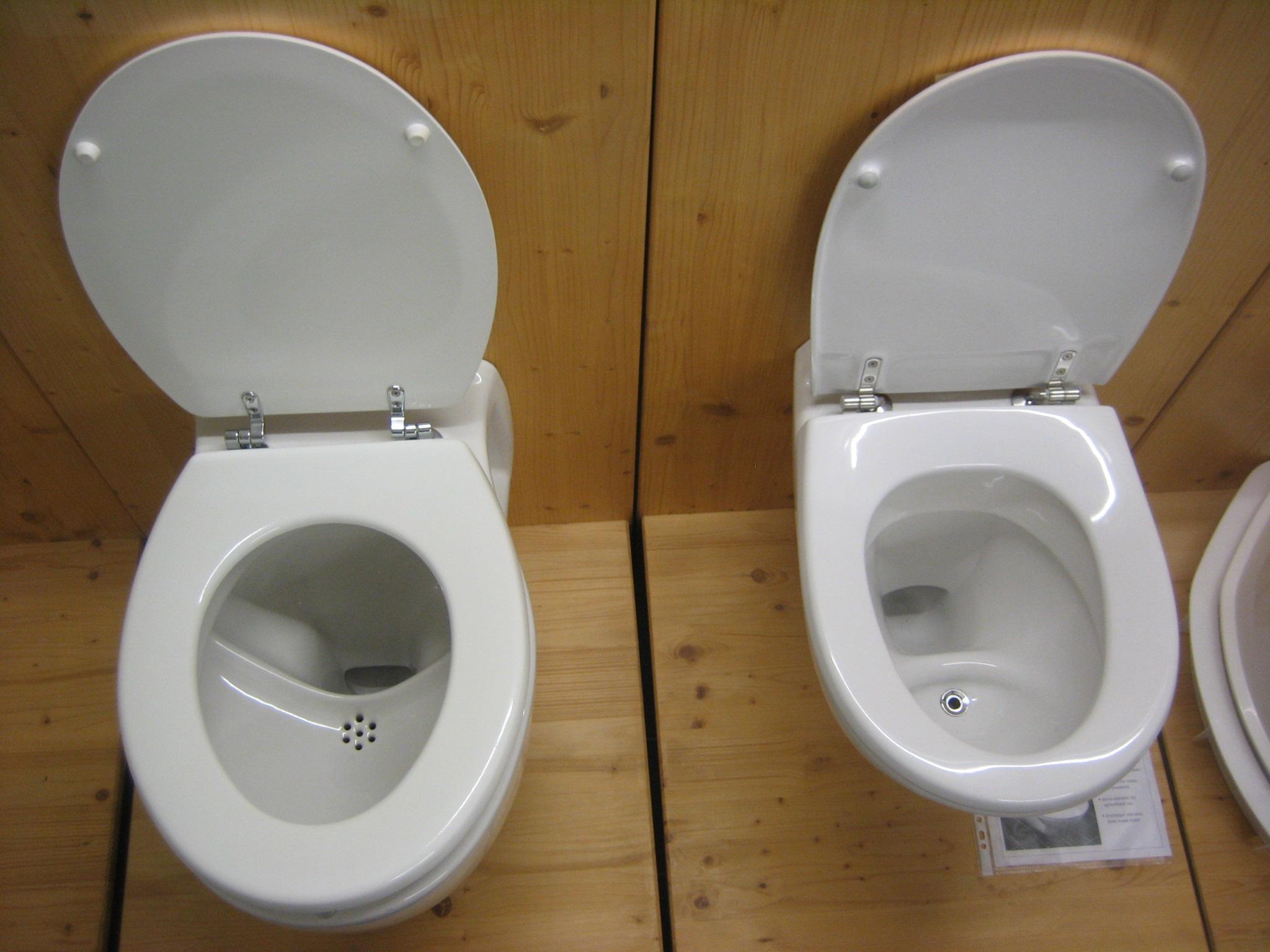 Fullsize Of Power Flush Toilet