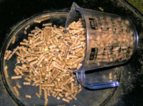 Pig pellet food