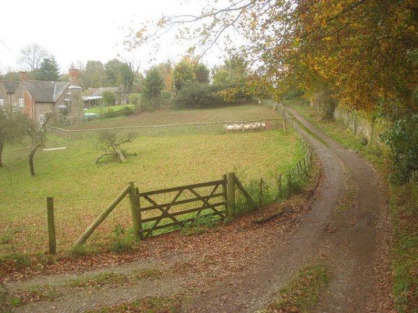 English: Track on the Brockhampton Estate Look...