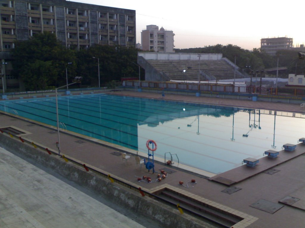 contemporary olympic size swimming pool fileandheri sports complex in decorating ideas