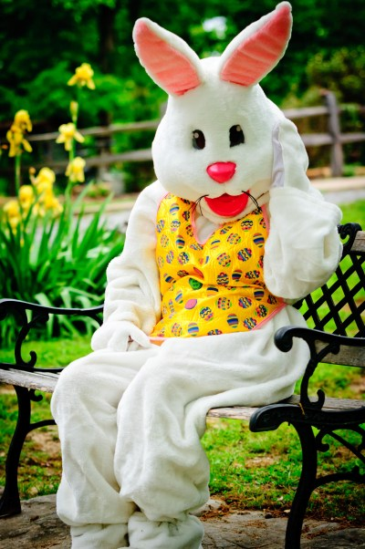 If The Easter Bunny Stopped At UVa