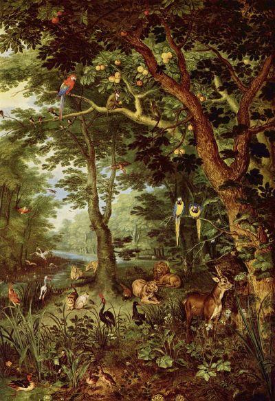 Paradise - Wikipedia