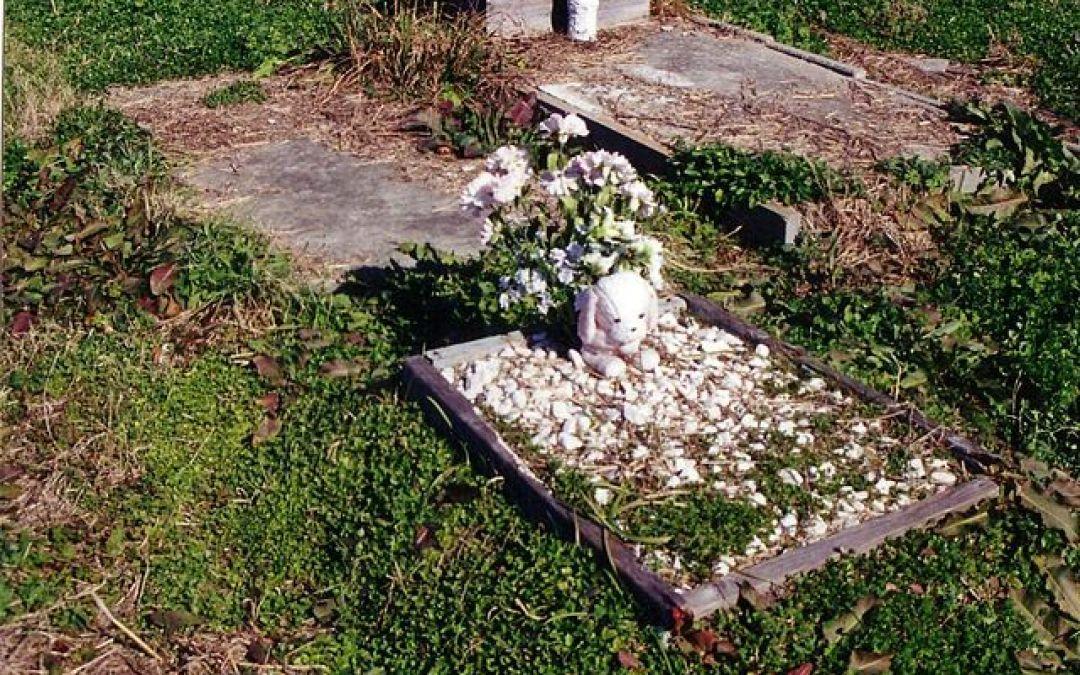 Holt Cemetery – 2005 Photos