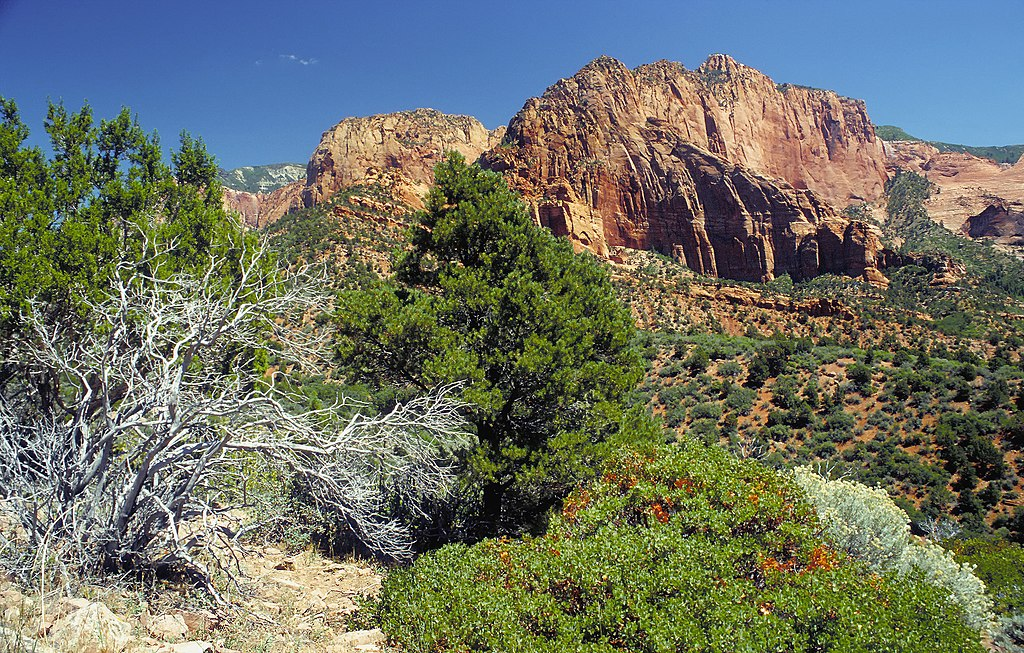 Kolob Canyons part of Zion National Park