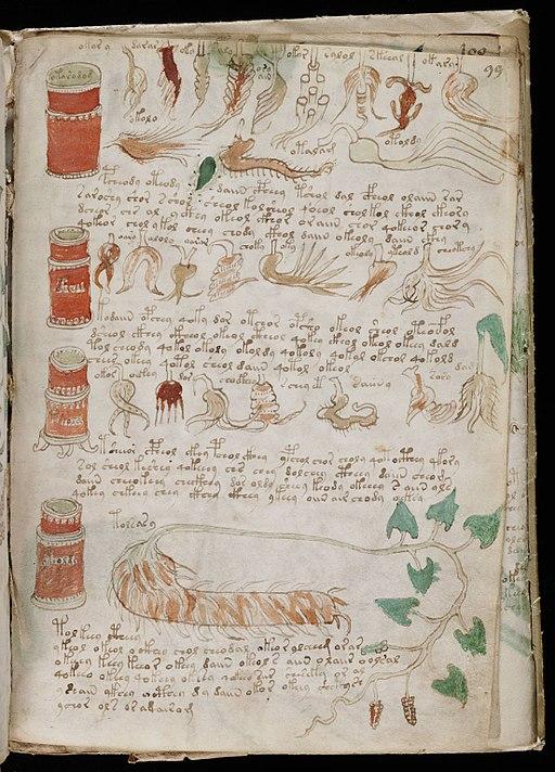 Voynich Manuscript (175)