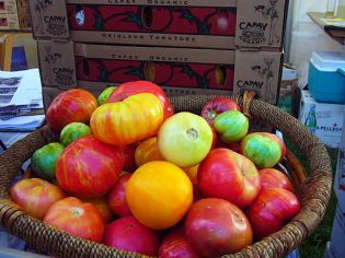 Capay heirloom tomatoes at Slow Food Nation