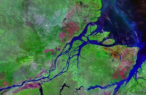 A false-color satellite photograph of the Amaz...