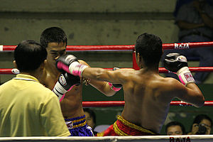One of The Best Muay Thai Websites