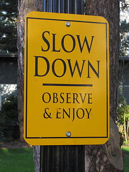 Slow down sign, Reed College, Portland, Oregon (2013)