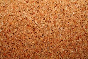 Cork, a common bulletin board material