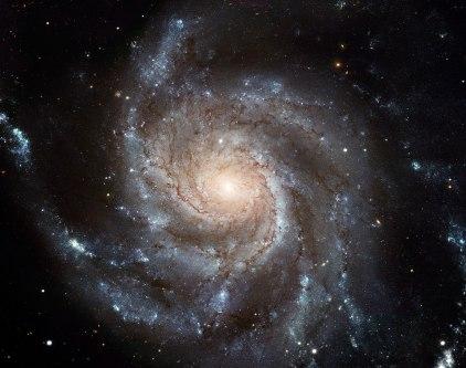 M101 - The Pinwheel Galaxy in Ursa Major. Credit: ESA/NASA/Wikimedia Commons