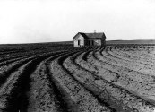 File:Tenantless farm Texas panhandle 1938.jpg