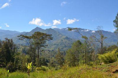 New Guinea Highlands - Wikipedia