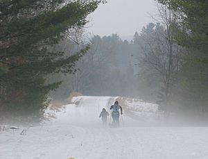 Cross country ski trail in Gatineau Park