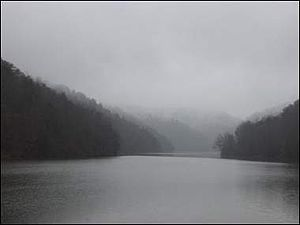 Fog on a lake in Hungry Mother State Park.