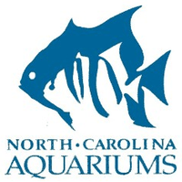 North Carolina Aquariums   Wikipedia, the free encyclopedia