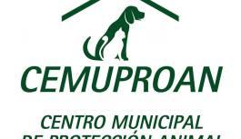 LOS ANIMALISTAS DENUNCIAN PRESIONES Y CENSURA