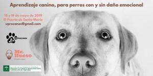 Aprendizaje y emociones, Mr. Hueso Cádiz mayo 2019