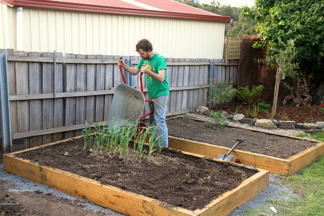 top-dressing-compost