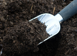 amending-garden-soil-7