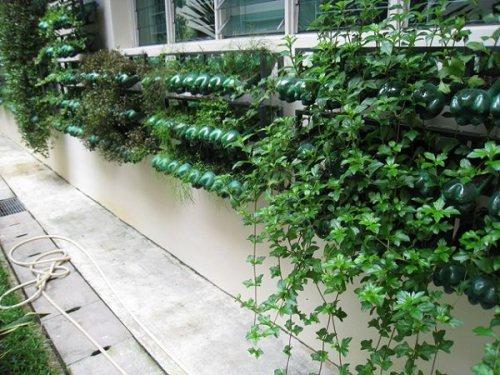 Singapore-Vertical-Garden
