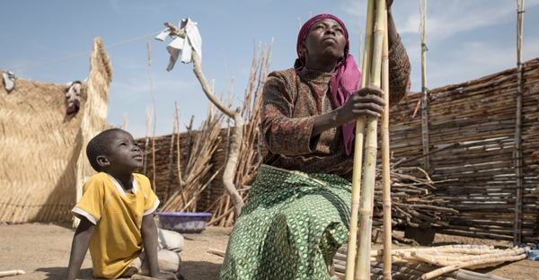 A Nigerian refugee and her grandson prepare rushes to repair the fence of the courtyard in Minawao refugee camp. (©UNHCR/Alexis Huguet)