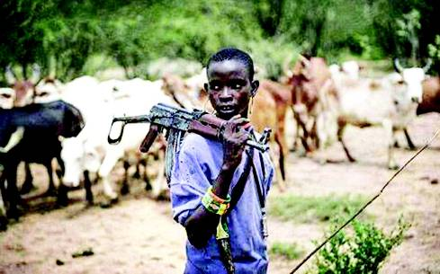 Fulani Herdsmen Dare Southerners, Say No One Can Stop Them  from Grazing in the South