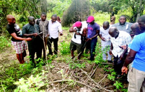 How Vigilante Recover Corpse of Kidnapped Warri College of Education Lecturer in Shallow Grave